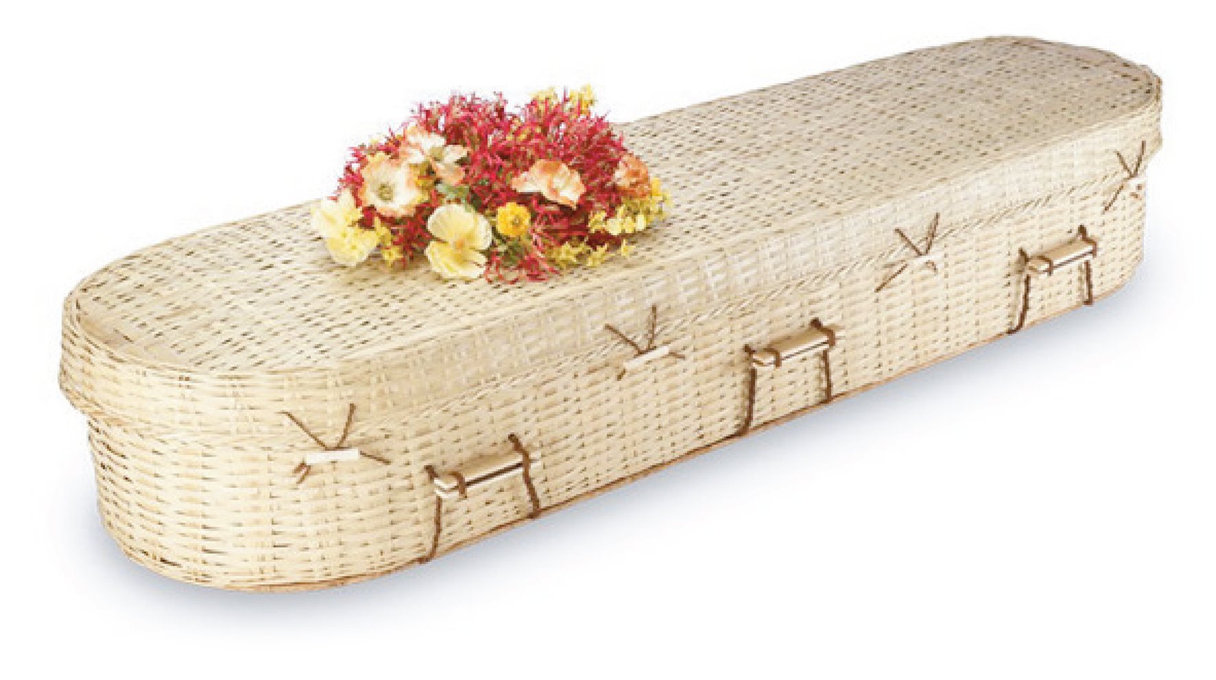Bamboo Rounded Coffin